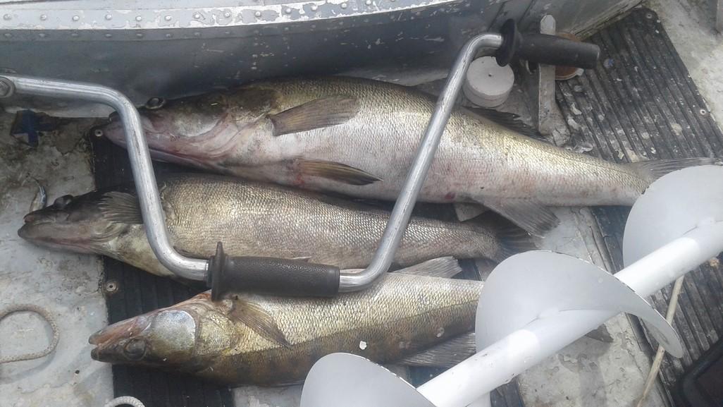 Особенности зимней рыбалки в Тверской области